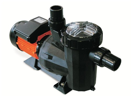 Astral Victoria Dual Speed 1,5 hp 230V
