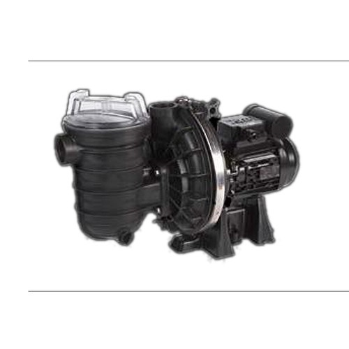 Sta-Rite S5P2RE-1 Salt Water Pool pump