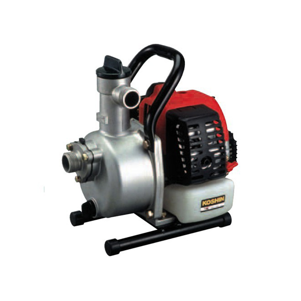 Fuel motor pumps